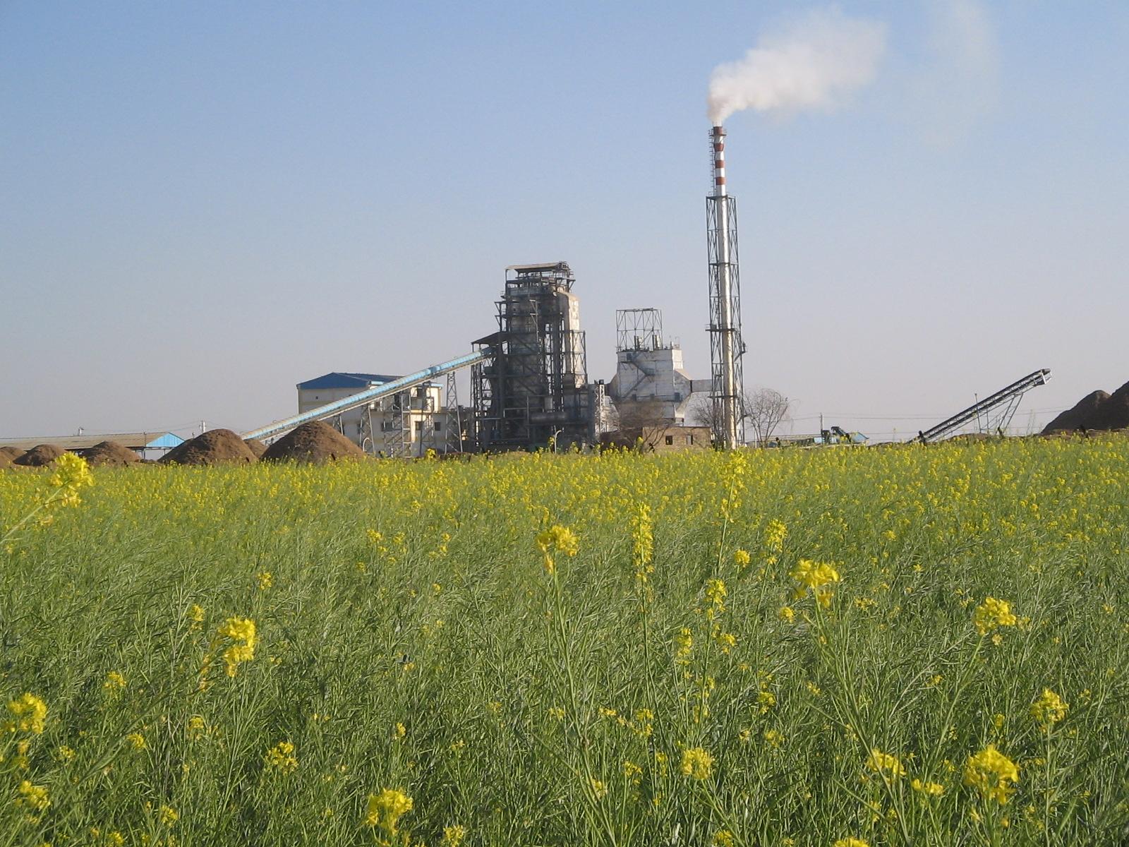 Green Bio fuels